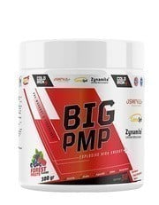 Cold Iron Big Pmp 300gr