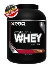 Xpro Concentrate Whey Protein Tozu 2280gr